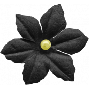 At The Fair- Black Flower