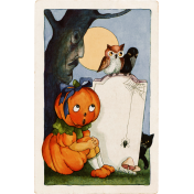 Cast A Spell Elements- Pumpkin Card