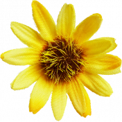 Cast A Spell Elements- Sun Flower
