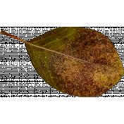 Autumn Pieces- Glitter Leaf