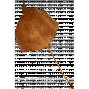 Autumn Pieces- Leaf 06
