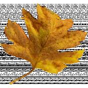 Autumn Pieces- Leaf 07
