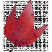 Autumn Pieces- Leaf 08