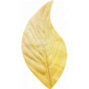 Buried Treasures- Leaf