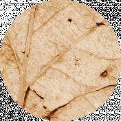 Buried Treasures- Leaf Circle