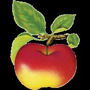 It's Elementary, My Dear- Apple