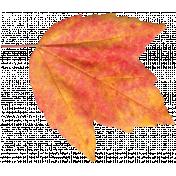 It's Elementary, My Dear- Leaf 1