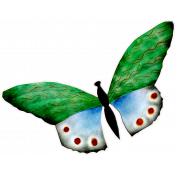 Reading, Writing, and Arithmetic- Paper Butterfly