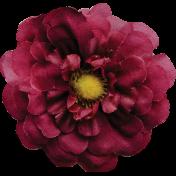 Grandma's Kitchen Red Flower