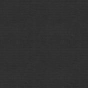 Winter Wonderland- Black Card Stock