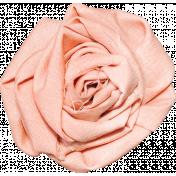 Peach Fabric Rose