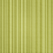 Tiny, But Mighty Green Striped Paper