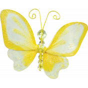 Tiny, But Mighty Yellow Butterfly