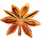 Christmas Memories Star Anise