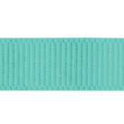Earth Day- Teal Ribbon