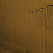 Earth Day- Brown Cardboard