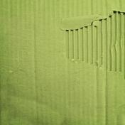 Earth Day- Green Cardboard