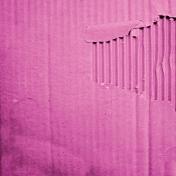 Earth Day- Pink Cardboard