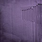 Earth Day- Purple Cardboard