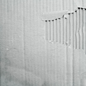 Earth Day- White Cardboard