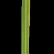 Blade of Grass 03