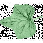Hello- Leaf
