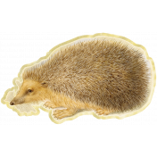 Oh Baby Hedge Hog Cutout