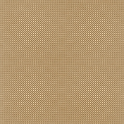 Oh Baby, Baby- Brown Dots Paper