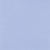 Pond Life- Solid Light Blue Paper