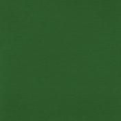 Pond Life - Solid Dark Green Paper
