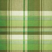 Pond Life- Green Plaid Paper