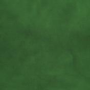 Pond Life- Dark Green Paper