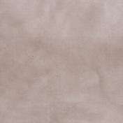 Pond Life - Cream Paper