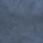 Pond Life- Blue Paper