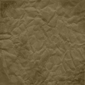Pond Life- Crumpled Brown Paper