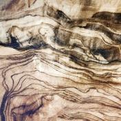 Pond Life - Brown Wood Paper