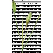 Pond Life- Plant 2