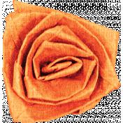 Garden Party- Orange Rose