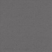 Tropics Paper Solid Gray