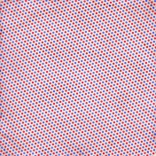 School Paper Dots Diagonal 002- 03