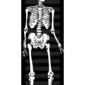 Spook Ribbon Skeleton
