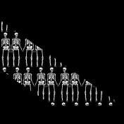 Spook Photo Corner Skeleton 03