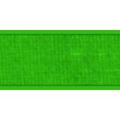 Ribbon- Green