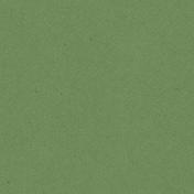 Kitchen Paper Cardboard 19- Green 004