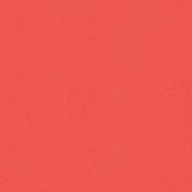 Kitchen Paper Cardboard 19- Pink 001