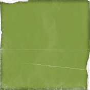 Miracle Paper Worn Green