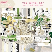 Our Special Day Collaboration