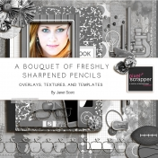 A bouquet of Freshly Sharpened Pencils- Overlays, Textures, and Template Bundle