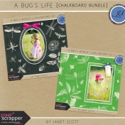 A Bug's World- Bundle
