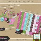 Waiting to Bloom- Bundle